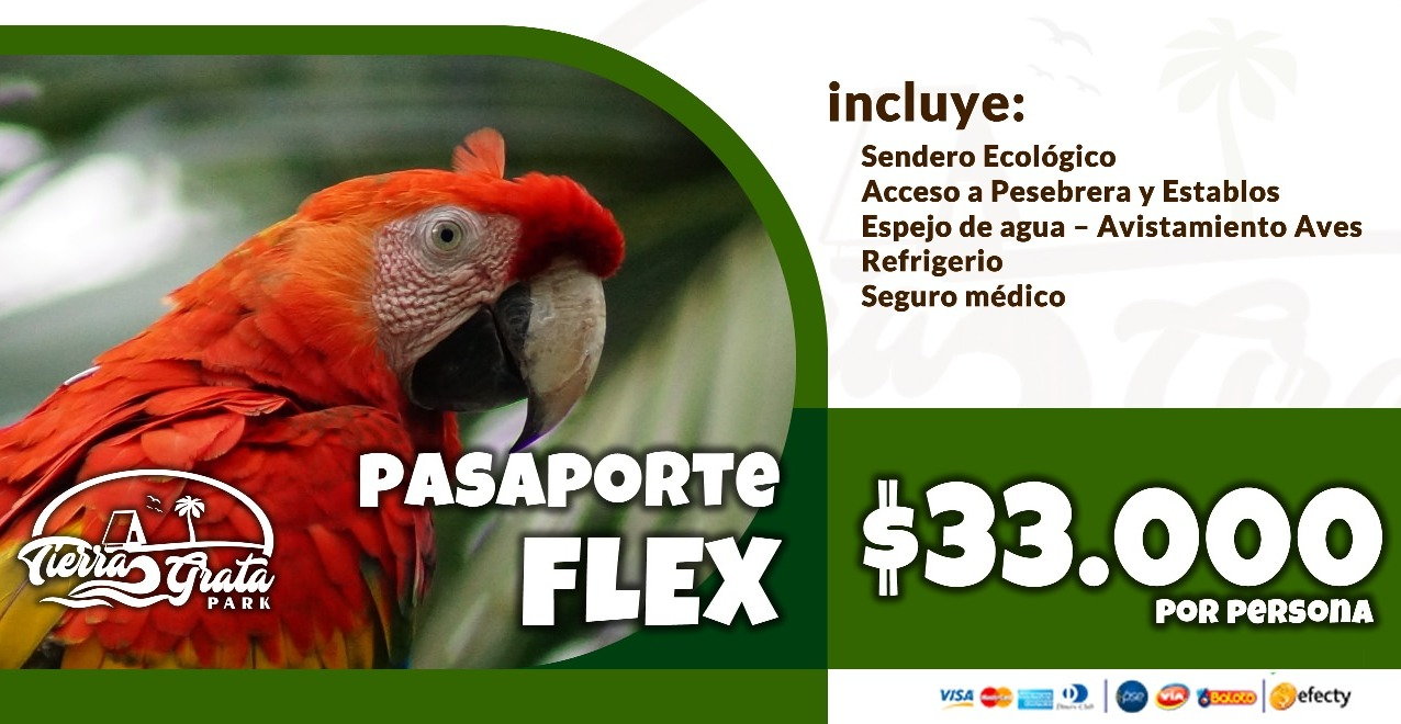 Pasaporte FLEX